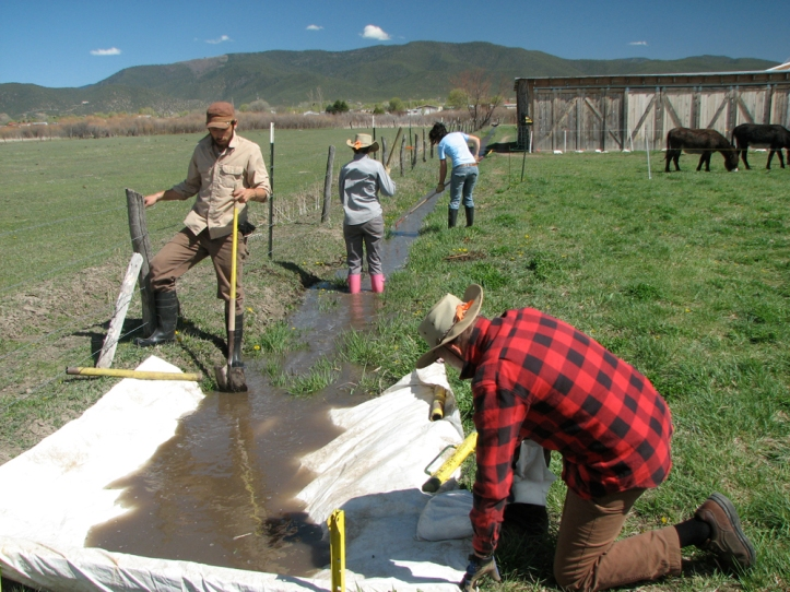 Commissioner John Hall, foreground, working on his acequia with his fellow parciantes