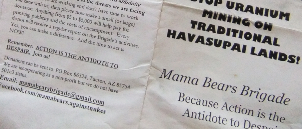 Mama Bears Brigade brochure for the Canyon Mine protest.