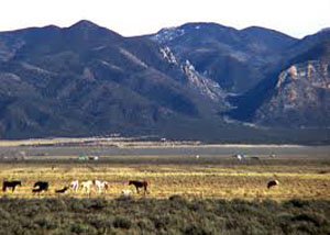 Open space north of the town of Taos.