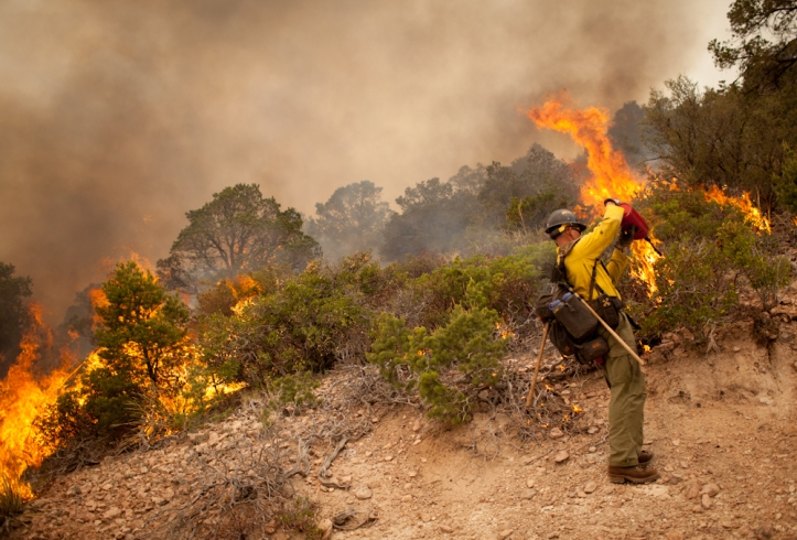 Setting a backfire on the Whitewater-Baldy Fire in the Gila National Forest. Photo by Jakob Schiller/WIRED
