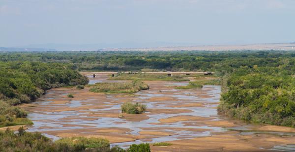 A nearly dry Rio Grande through Albuquerque, September 2013. Photo by John Fleck. www.inkstain.net