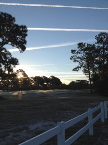 Monday, October 20, 2014, 7:50 a.m., taken from fence on Pine Grove Road looking east over Wilmington Municipal Golf Course in Wilmington, North Carolina. Note lines of contrails left by fighter-size jets near horizon. Photo by author